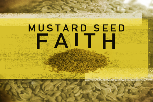 Testimony on Faith